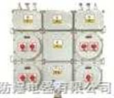 厂用防爆照明动力配电箱BXM(D)53