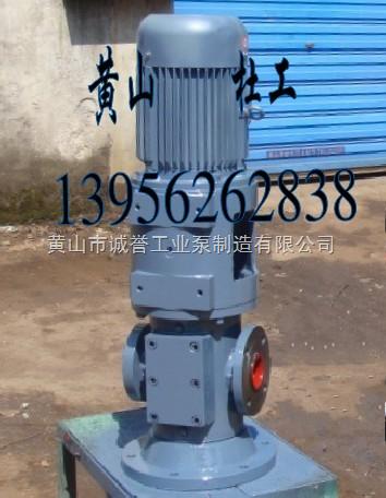 SNS210R46U12.1W21立式SN210